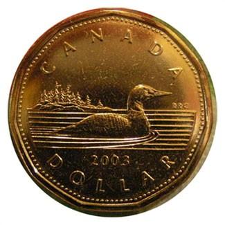 Un huard, le dollar canadien