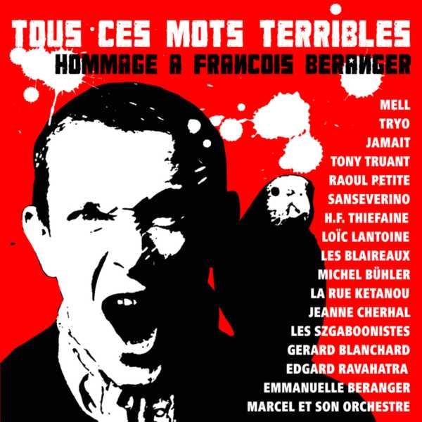 Hubert-Félix Thiéfaine, Tous ces mots terribles, 2008, pochette