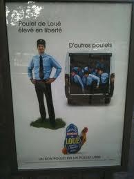 Une publicité de poulets et de policiers