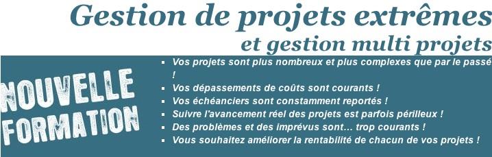 «Gestion de projets extrêmes», publicité, 2011