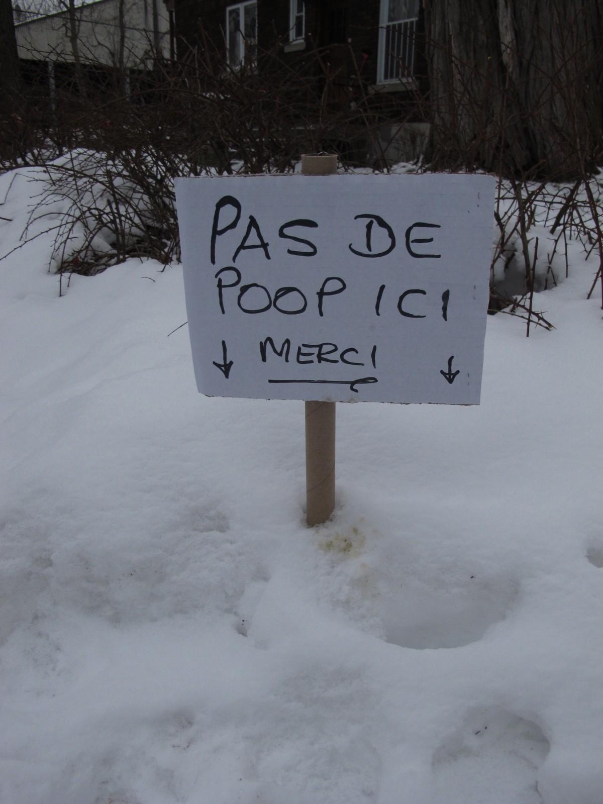 «Pas de poop», affichette, Westmount, 2011