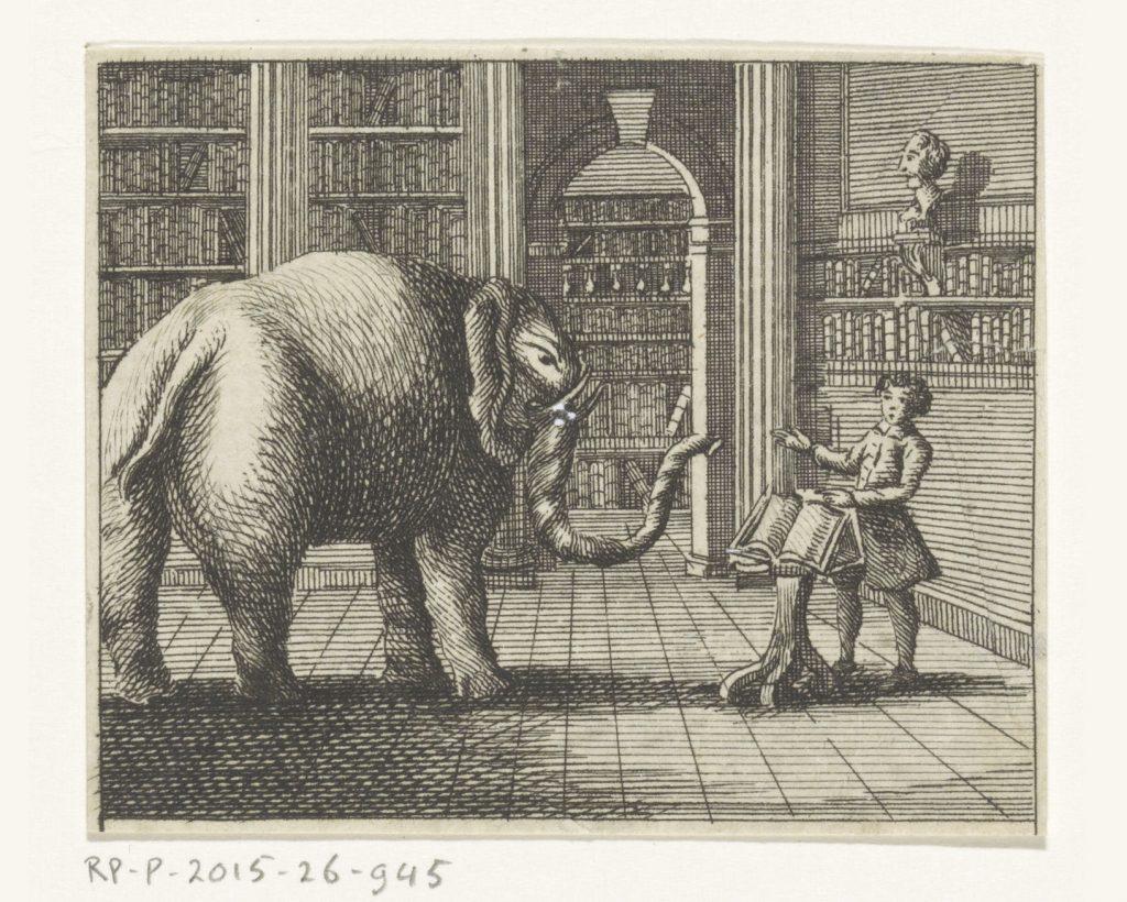 Éléphant dans une librairie, gravure anonyme, XVIIIe siècle
